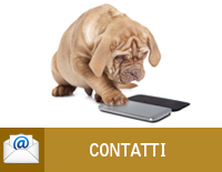 Contatta l'Ambulatorio Veterinario Aleandri